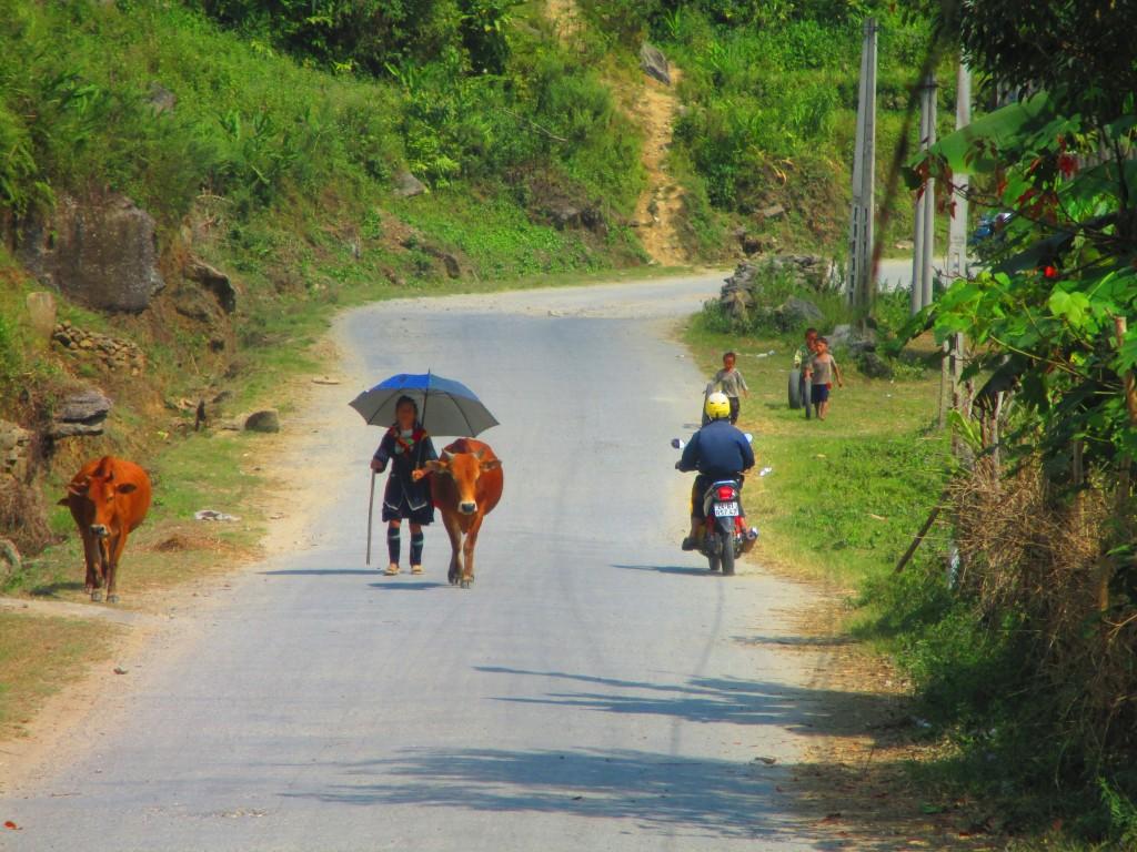 Sulla strada per Ban Ho