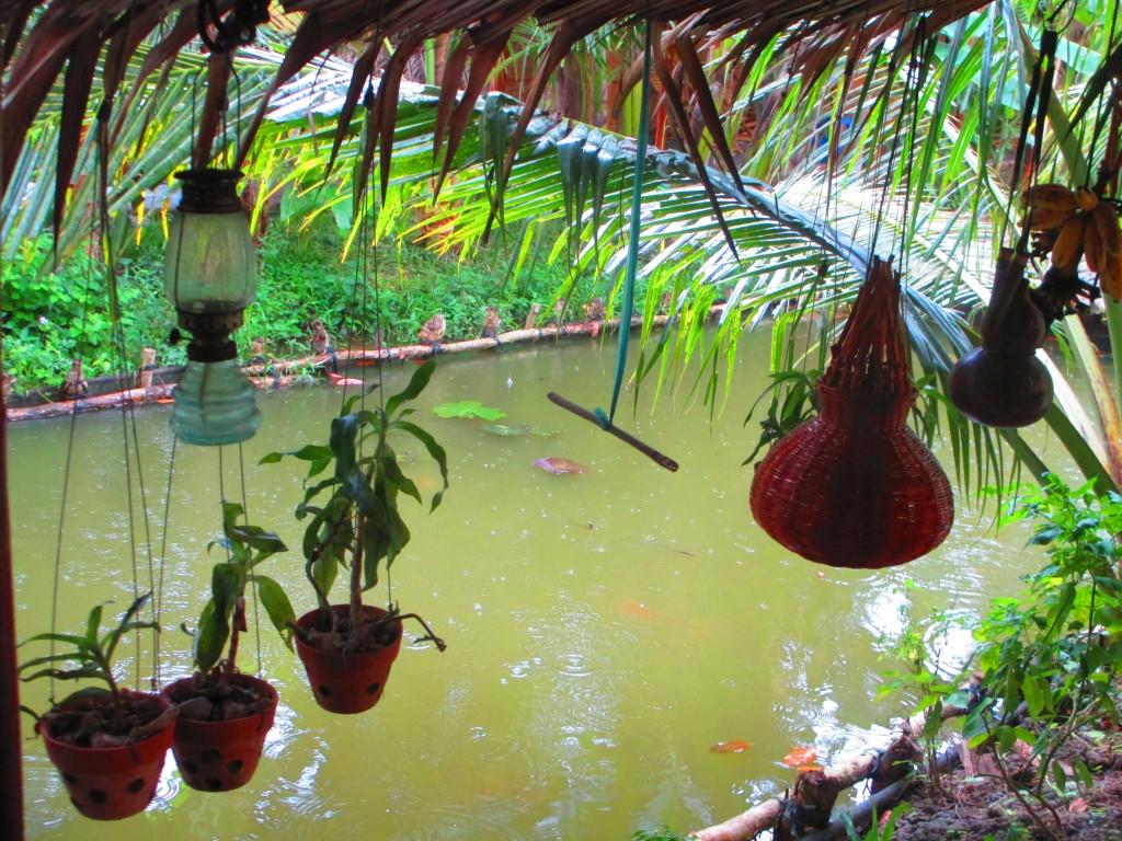 Pioggia, Mekong Delta, Vietnam
