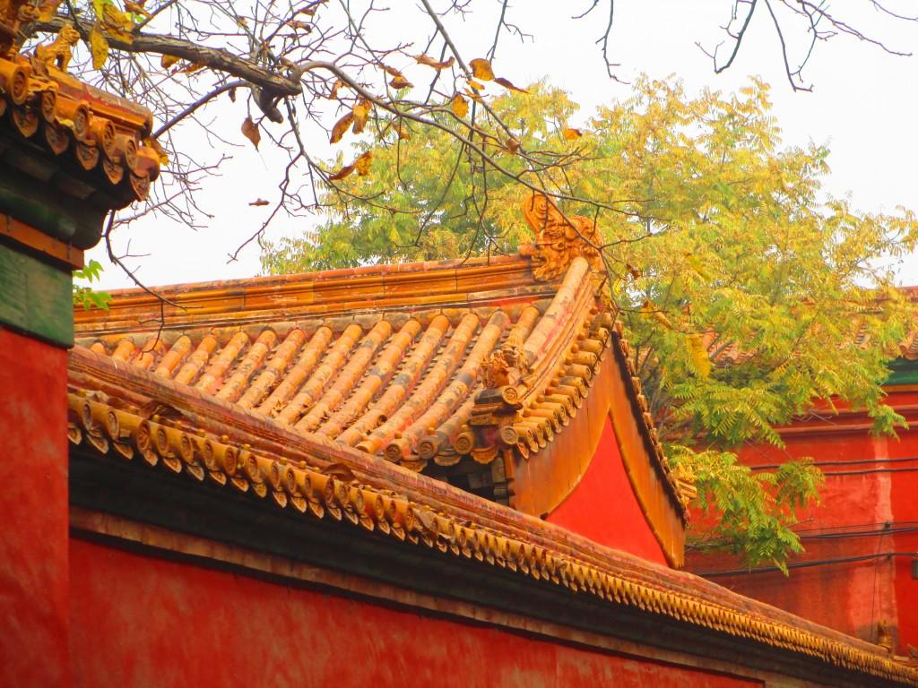 Città Proibita a Pechino, un tetto