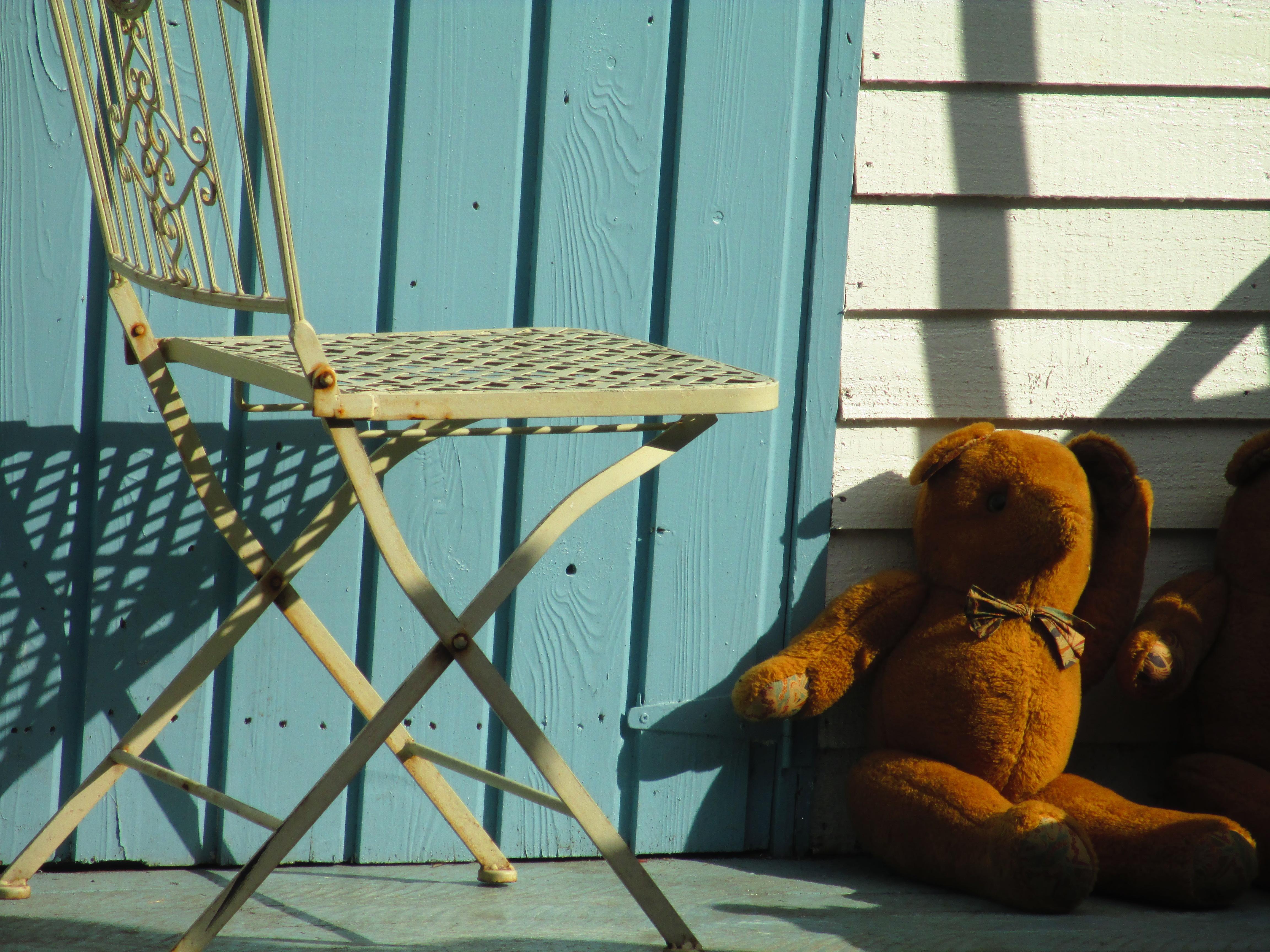 Un orsetto a Dalkey, Dublino