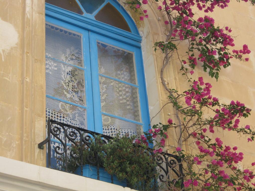 finestra fiorita a Malta
