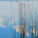 Vacanza al lago Trasimeno con i mezzi pubblici