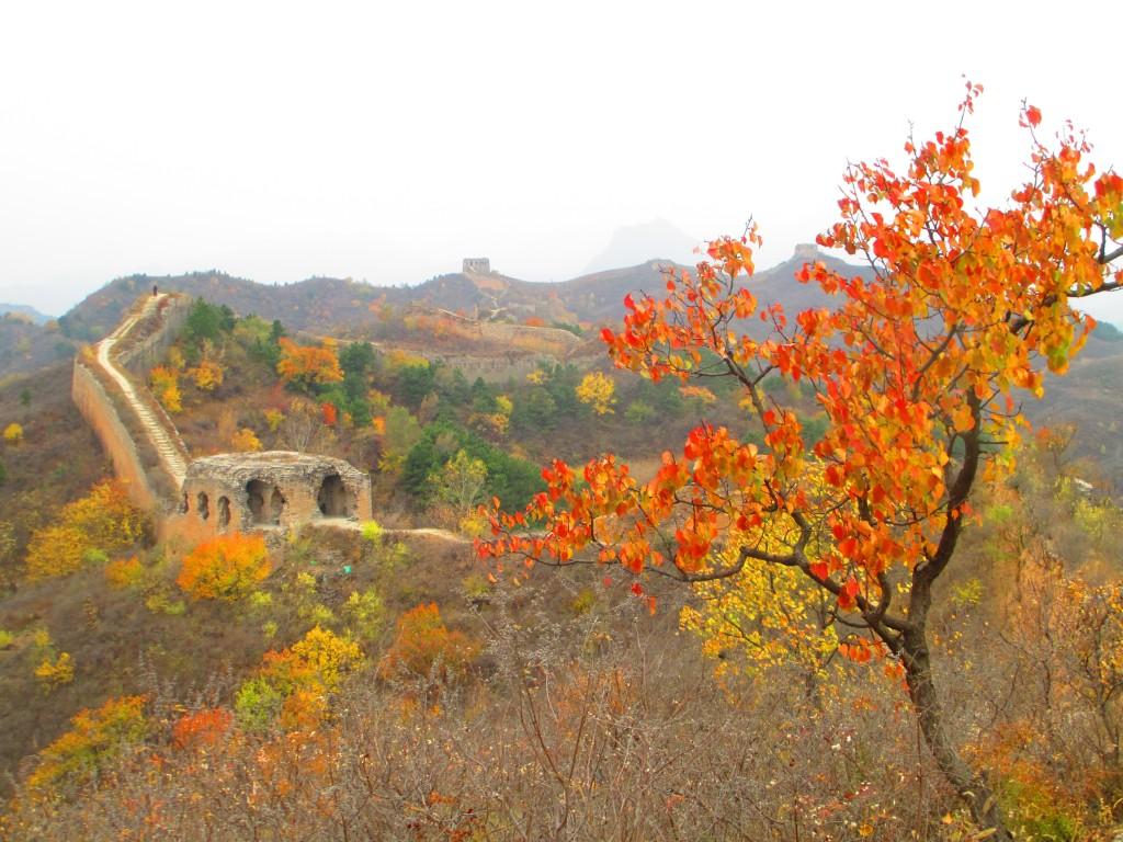 immagine autunnale della grande muraglia di Gubeiko