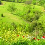 Umbria low cost con le offerte Groupon
