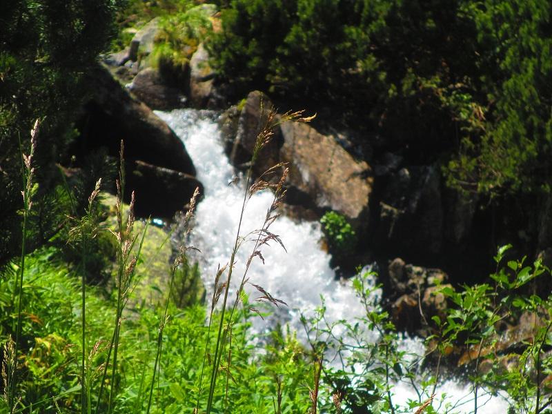 fiume parco rezenat