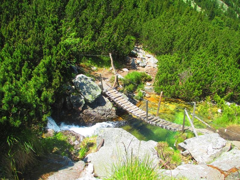 ponte di legno parco rezenat